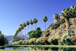 Palm Springs Area Community and Real Estate Information